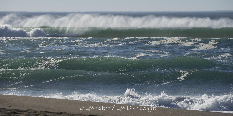 surf 02542