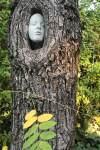 Tree Spirit 1180